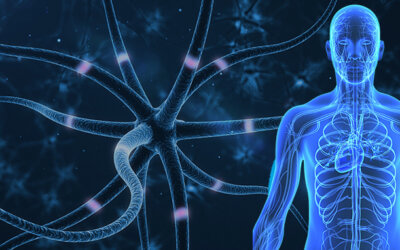 Can You use CBD for Neuropathy?