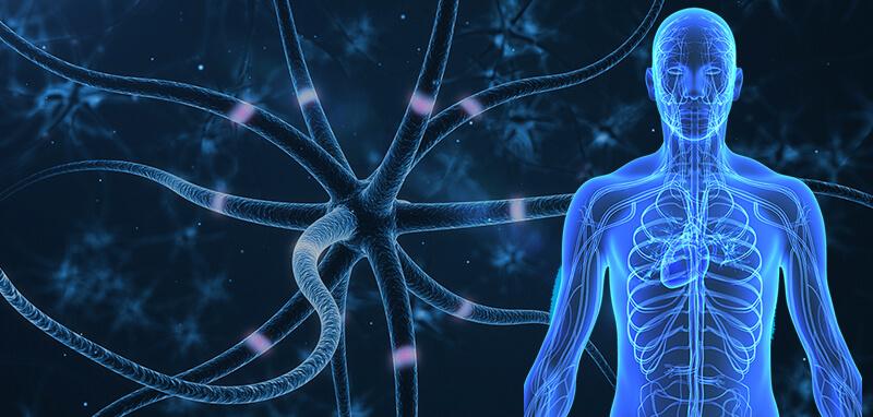 CBD for Neuropathy